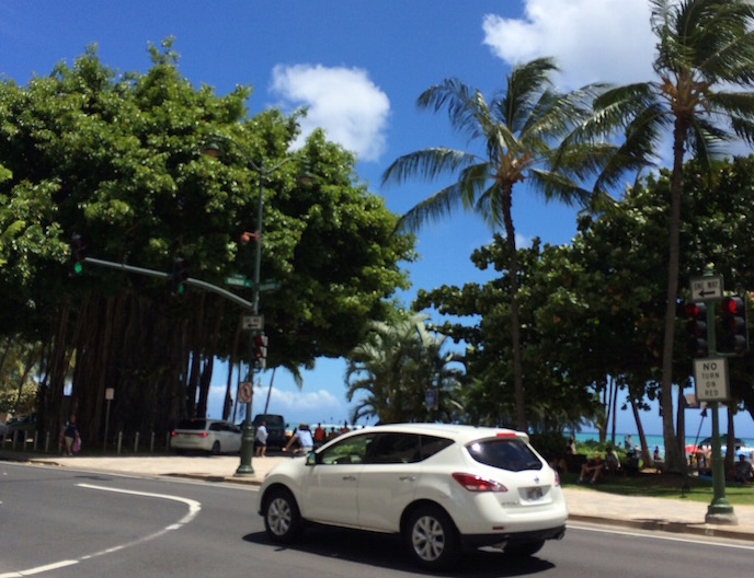 hawaii rent a car